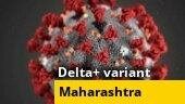 Maharashtra reports first death from Delta Plus variant