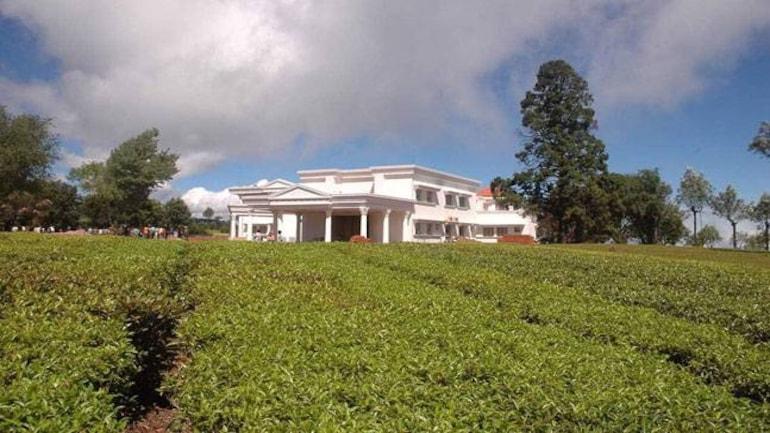 Kodanad estate