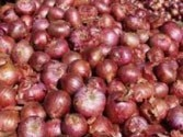 Onion selling at Rs 80 a kg, Modi minister says he is helpless in controlling price