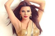 Viral: Kamasutra girl Sherlyn Chopra leaves little to imagination in new photo