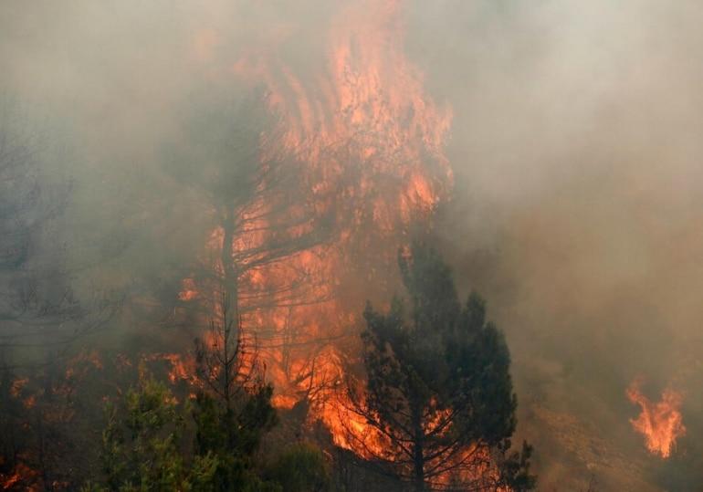 italy wildfire, turkey wildfire, turkey damage, greece wildfire, greece catastrophe, world news, blaze in greece