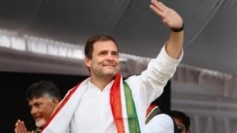Rahul Gandhi assembly elections results