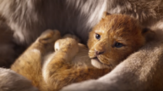 The Lion King has crossed the Rs 50-crore mark in 3 days.