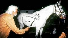 MF Husain paints horse