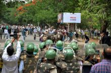 A herd of buffaloes caught in the clash between the police and pro-Telangana agitators in Hyderabad