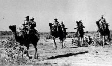 Camel corps of the Rajasthan Armed Constabulary during the 1965 war.