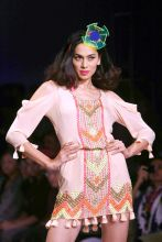 Wills Lifestyle India fashion Week 2012 ramp show