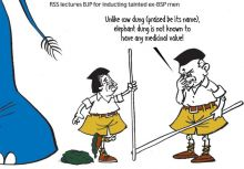 2012's top picks of cartoonists R. Prasad and Narsim