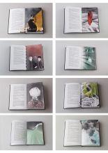 Kincso Nagy, Harry Potter books