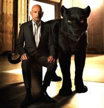 Sir Ben Kingsley as Bagheera