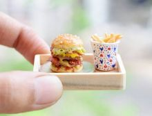 Is this the smallest plate of burger and fries in the world?