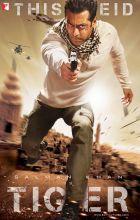 Ek Tha Tiger (2012)