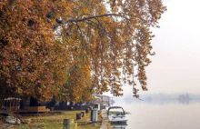 The famous Char Chinar, in the middle of the Dal Lake in Srinagar, is visible at a distance in this photo.