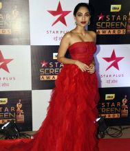 22nd Star Screen Awards 2016