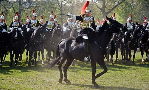 Cavalrymen of the Blues, Royals, Ministry of Defence