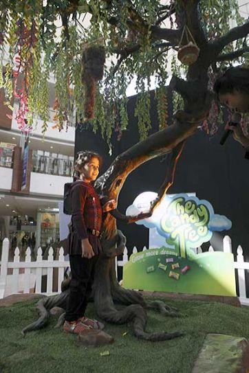 Girl near candy tree in New Delhi
