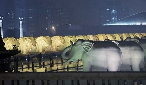 Covered statues of elephants in Noida