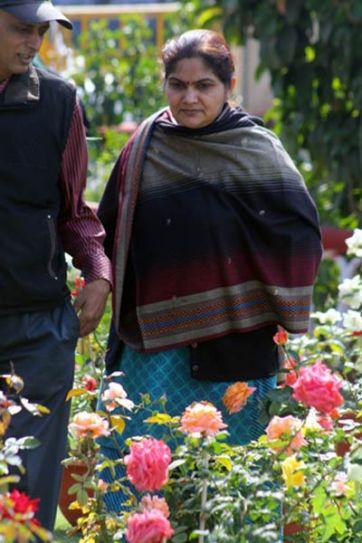 People look at roses on display