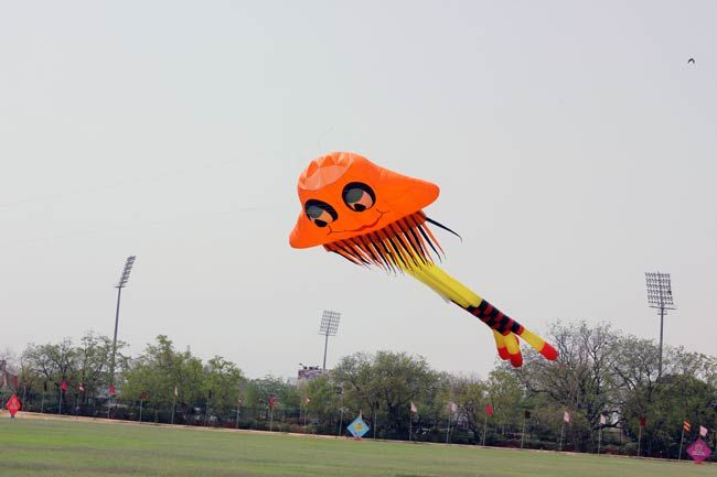International Kite Festival in Jaipur.