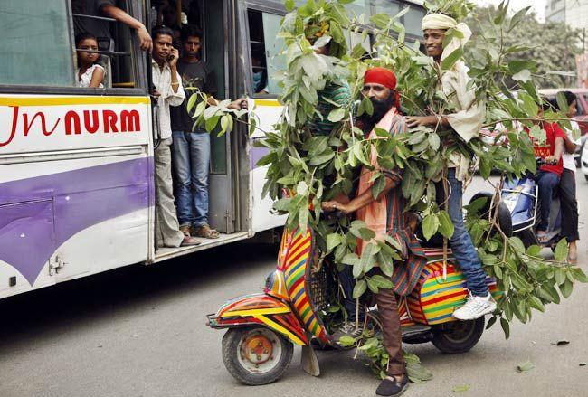 India celebrates World Environment Day 2012