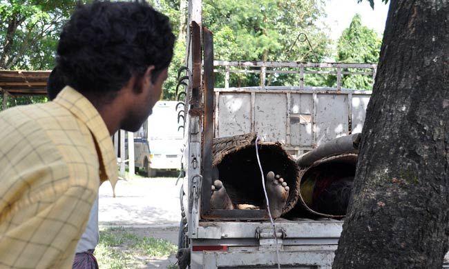 Assam ethnic strife