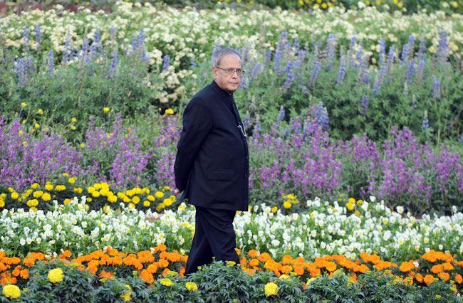President Pranab Mukherjee at Mughal Gardens