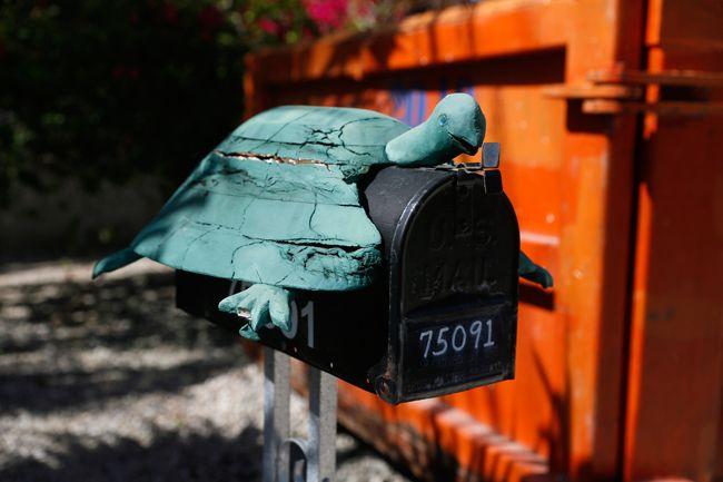 turtle-shaped mailbox