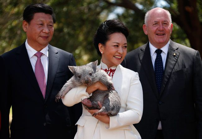 Peter Cosgrove (R) stands with Xi Jinping and his wife Peng Liyuan (c)