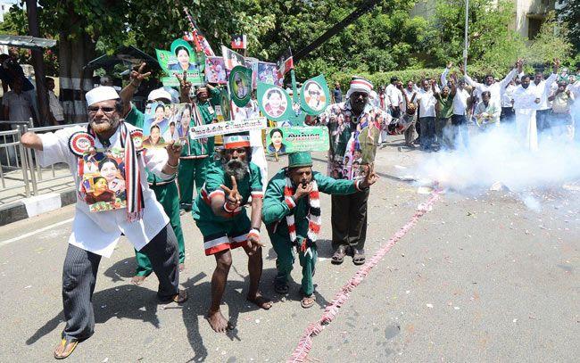 Celebrations at its peak as Jayalalitha wins the Tamil Nadu bypolls