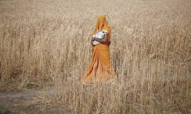 Indian women's daily lives