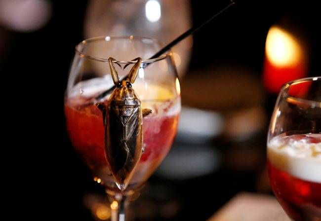 The cocktail served at this Tokyo bar is not meant for the faint hearted. Made with water bug juice, this cocktail is a part of a menu dominated by bugs in various forms.