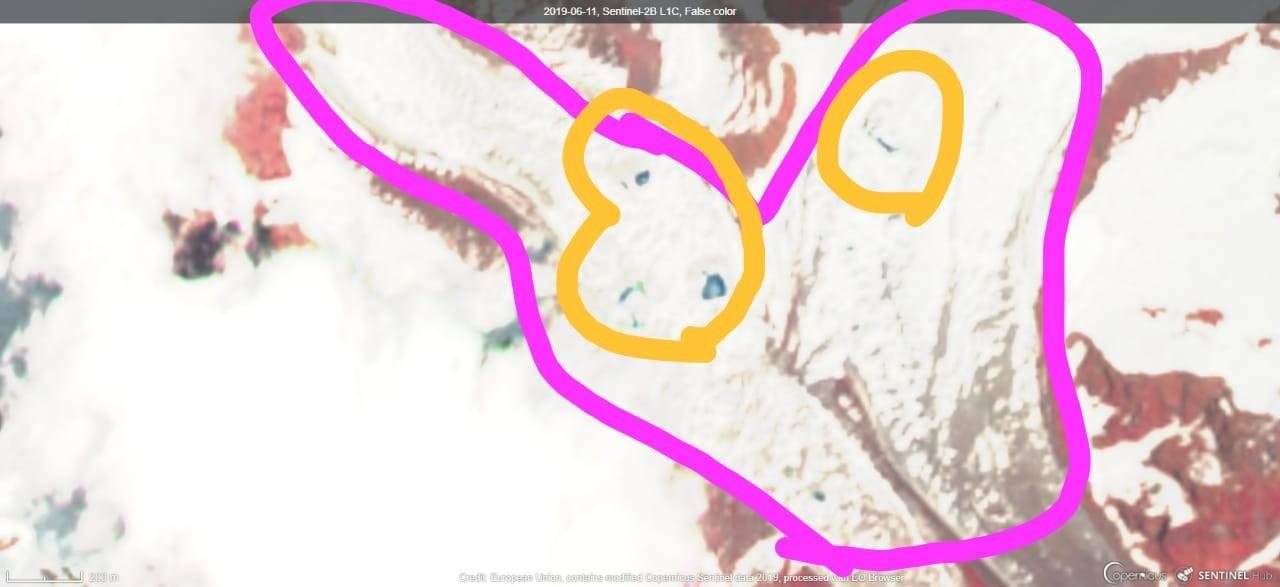 kedarnath_pinkalarming_june-11_062819021402.jpg