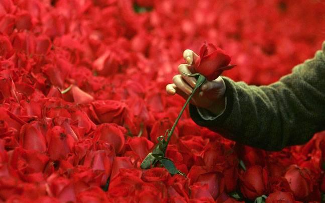 valentine-day-mos_021320034156.jpg