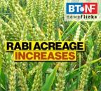 Rabi acreage increases 2.9% YoY; coarse cereals decline