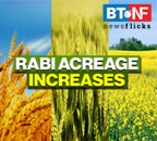 Rabi acreage at 65.2 million hectares; set to touch all-time high