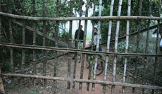 A bamboo gate erected at Patana village in Orissa to keep Posco officials out.