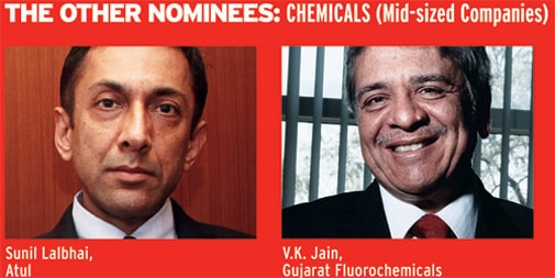 The other nominees: Chemicals (Mid-sized companies)