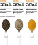 Investing in spices