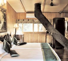 The Oriental Buzzard Nest at The Tree House Resort