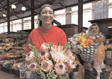 The Protea, an emblem of South Africa, may be the fiercest flower in the world