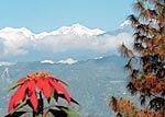 Rinchenpong in Sikkim