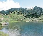 Gushaini in Himachal Pradesh