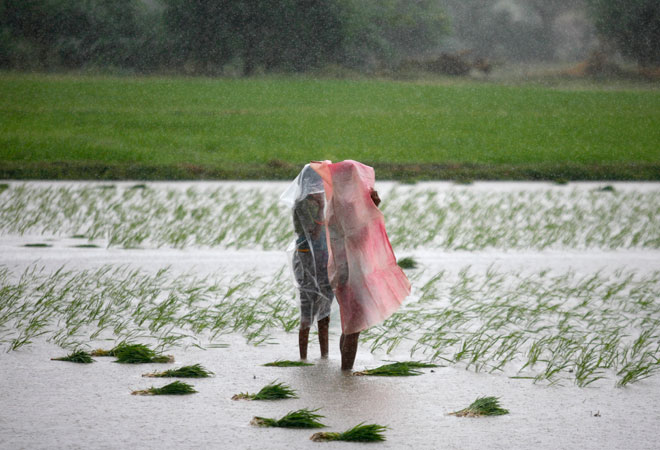 Govt ready with contingency plan to deal with poor monsoon