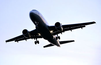 Grocery shopping, eating out more dangerous than flying! Harvard researchers find air travel has lower risk