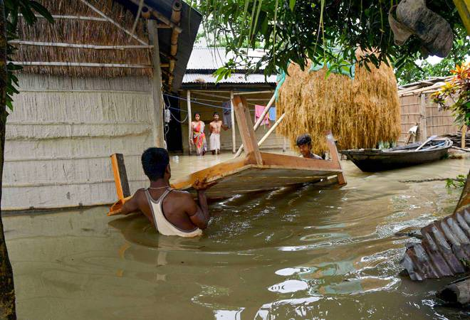 Assam flood: 15 dead, 43 lakh people affected; 90% Kaziranga Park inundatedAssam flood: 15 dead, 43 lakh people affected; 90% Kaziranga Park inundated