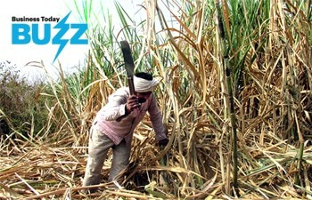 BT Buzz: Bailed out for now, sugar sector needs structural reforms