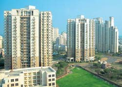 Increase in number of real estate companies