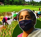 Budget 2021: GST waiver, level-playing field; what agri sector expects from FM Nirmala Sitharaman?