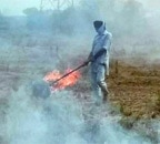 Rebooting Economy 40: Why Punjab farmers burn stubble?