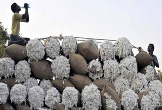 China's cotton imports fell 42 per cent in the first nine months of the year to 1.16 million tonnes.